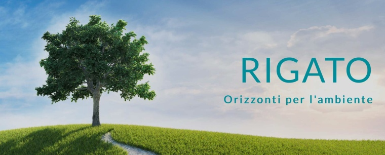 Logo immagine Impresa Rigato Marghera